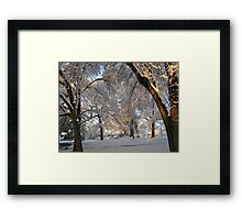 Feb. 19 2012 Snowstorm 137 Framed Print