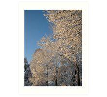 Feb. 19 2012 Snowstorm 138 Art Print