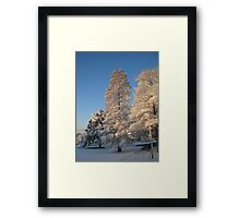 Feb. 19 2012 Snowstorm 140 Framed Print