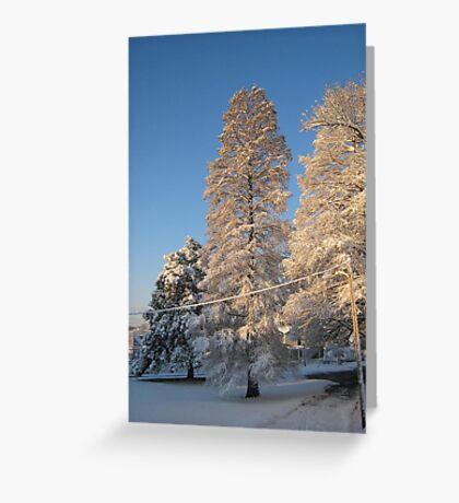 Feb. 19 2012 Snowstorm 140 Greeting Card