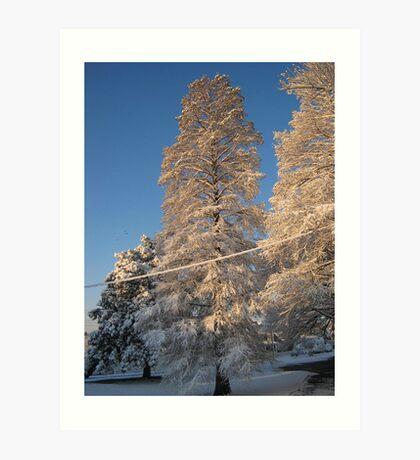 Feb. 19 2012 Snowstorm 141 Art Print