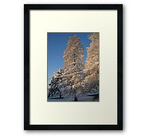 Feb. 19 2012 Snowstorm 141 Framed Print