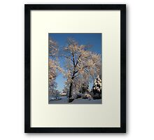 Feb. 19 2012 Snowstorm 143 Framed Print