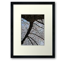 Feb. 19 2012 Snowstorm 145 Framed Print