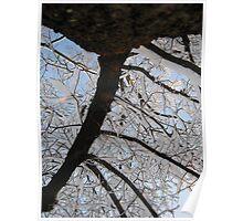 Feb. 19 2012 Snowstorm 145 Poster