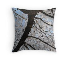 Feb. 19 2012 Snowstorm 145 Throw Pillow