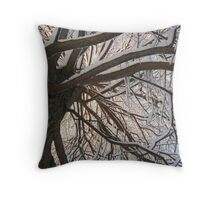 Feb. 19 2012 Snowstorm 147 Throw Pillow