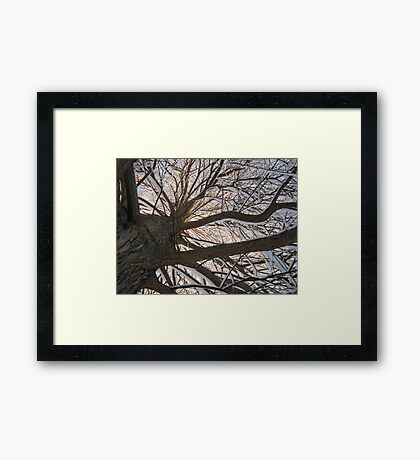 Feb. 19 2012 Snowstorm 148 Framed Print