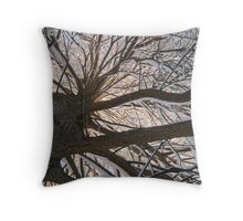 Feb. 19 2012 Snowstorm 148 Throw Pillow