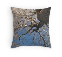 Feb. 19 2012 Snowstorm 149 Throw Pillow