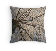 Feb. 19 2012 Snowstorm 152 Throw Pillow