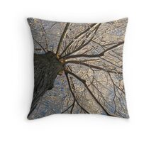 Feb. 19 2012 Snowstorm 153 Throw Pillow