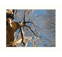 Feb. 19 2012 Snowstorm 159 Art Print