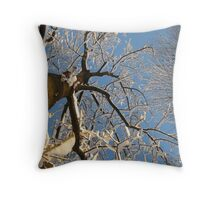 Feb. 19 2012 Snowstorm 159 Throw Pillow