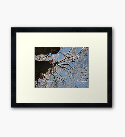 Feb. 19 2012 Snowstorm 160 Framed Print