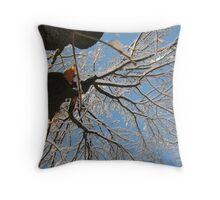 Feb. 19 2012 Snowstorm 160 Throw Pillow