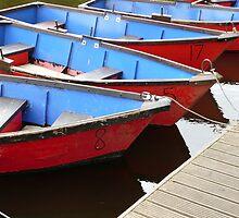 Row boats for hire by Woodie