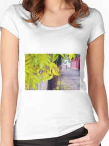 Ash tree with yellow leaves and pavement tiles Women's Fitted Scoop T-Shirt