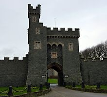 Killyleagh Castle Entrance by Fara