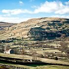 Swaledale Barns (Best viewed large) by Sue Knowles