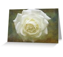 Vintage White Rose Greeting Card