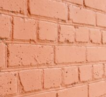 Angle view of a brick wall with a layer of red paint Sticker