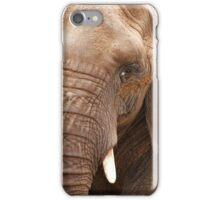 Close Up Elephant iPhone Case/Skin