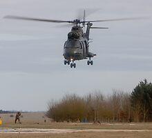 Puma Take Off by Karl Thompson