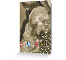 Scooby Scribbles Greeting Card
