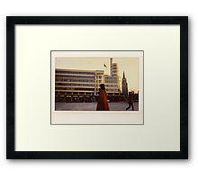 flageynorma Framed Print