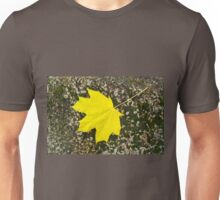 Single maple leaf fallen on the surface of a large stone Unisex T-Shirt