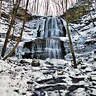 Winter at Sherman Falls by deb cole