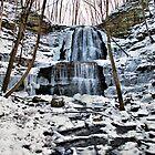 Winter at Sherman Falls by deb cole