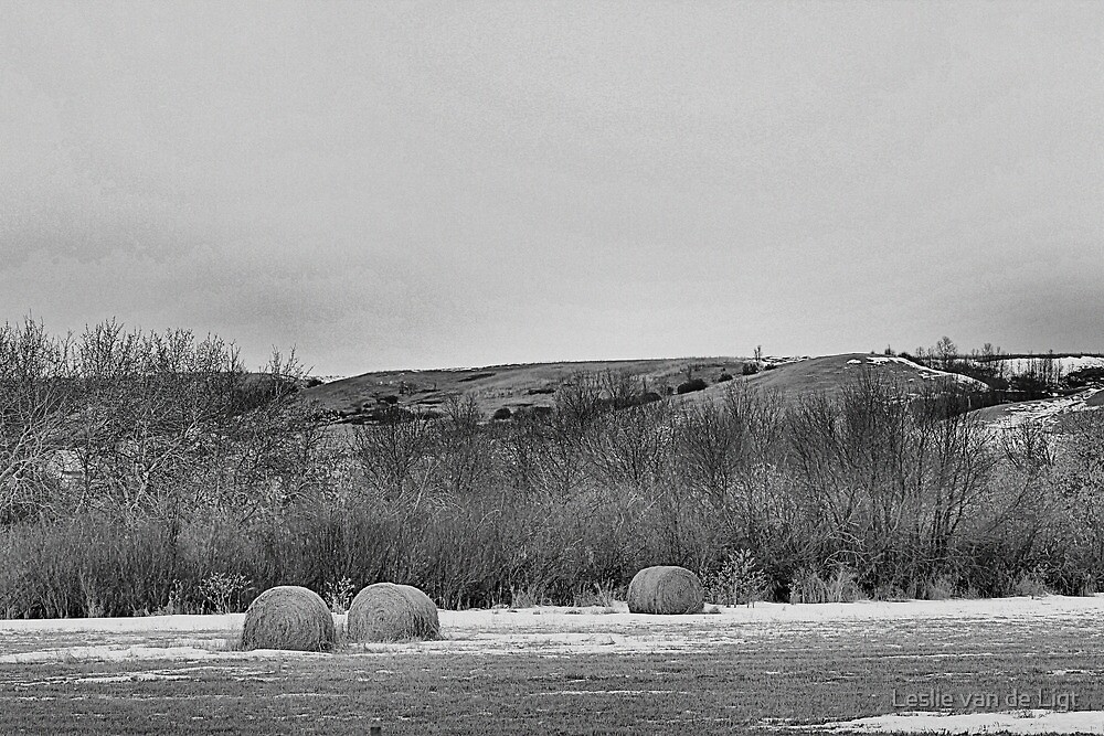 Winter Bales of The QU'APPELLE VALLEY Saskatchewan by Leslie van de Ligt