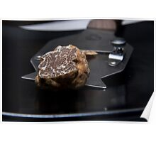 Oregon White Truffle with Shaver Poster