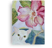 My Desert Rose - Adenium Canvas Print