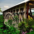 Bowser's Covered Bridge In May by Lois  Bryan