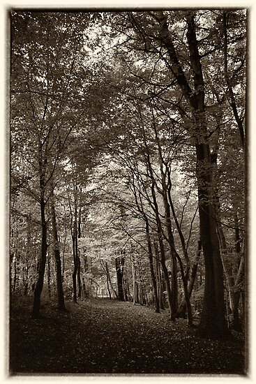 Rolduc Abbey Park, Kerkrade, Netherlands by Lenka