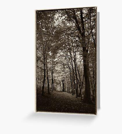 Rolduc Abbey Park, Kerkrade, Netherlands Greeting Card