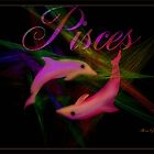 PISCES FEBRUARY 19TH -TO MARCH 20TH by Sherri     Nicholas