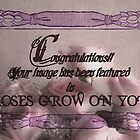 Roses grow on you congratulations banner. by Sandra Foster