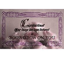 Roses grow on you congratulations banner. Photographic Print