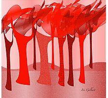 Redscape 2 Photographic Print