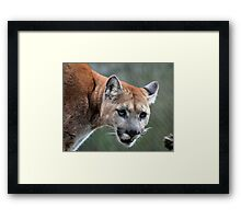 I am warning you! Framed Print