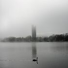 National Carillon in mist Canberra by Tony Theobald