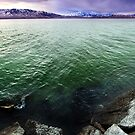 Utah Lake - Green Waters by Ryan Houston