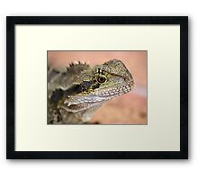 Is your Skin a Bit Dry? Framed Print