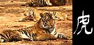 Tiger symbol (Chinese word for tiger) 005 by Karl David Hill