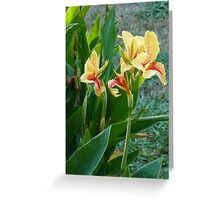 Flowers Collecton Greeting Card