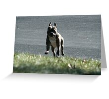 Here I come! Greeting Card